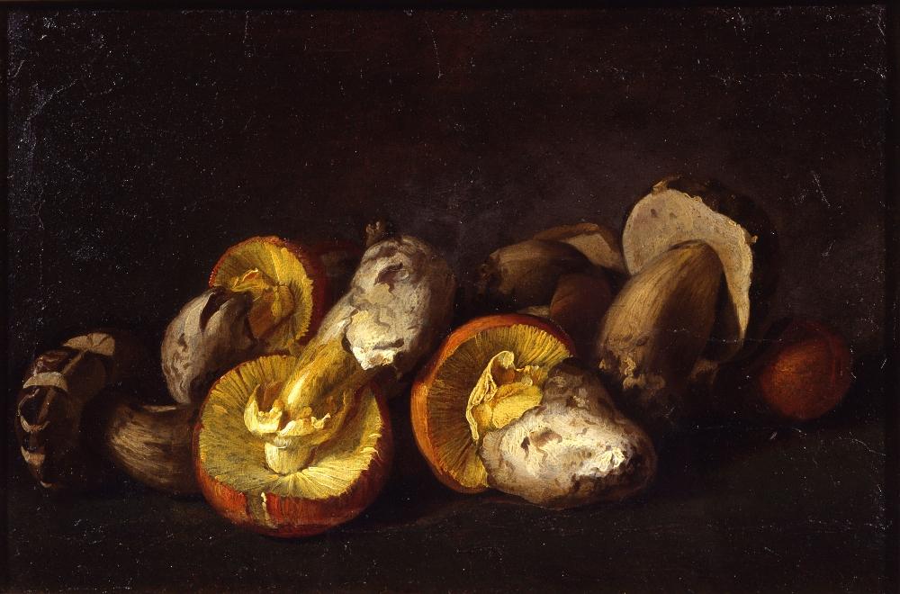 05. Pitocchetto Natura Morta Con Funghi Museo Baroffio